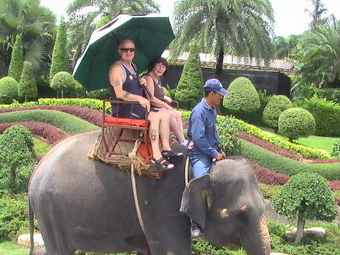 Elephant ride at Nong Nooch Garden